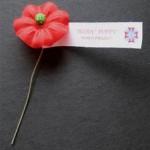 veterans poppy